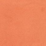 antara orange 2062